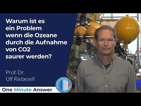 Warum ist es ein Problem wenn die Ozeane saurer werden? [Prof. Dr. Ulf Riebesell]